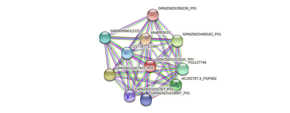 GRMZM2G024533_P01 protein (Zea mays) - STRING interaction network