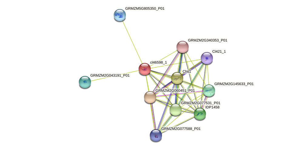 cl46598_1 protein (Zea mays) - STRING interaction network