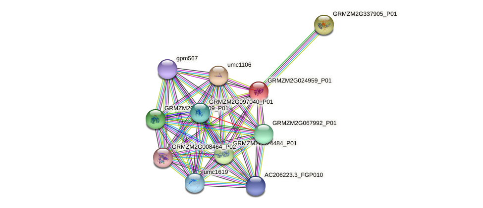 Zm.23807 protein (Zea mays) - STRING interaction network