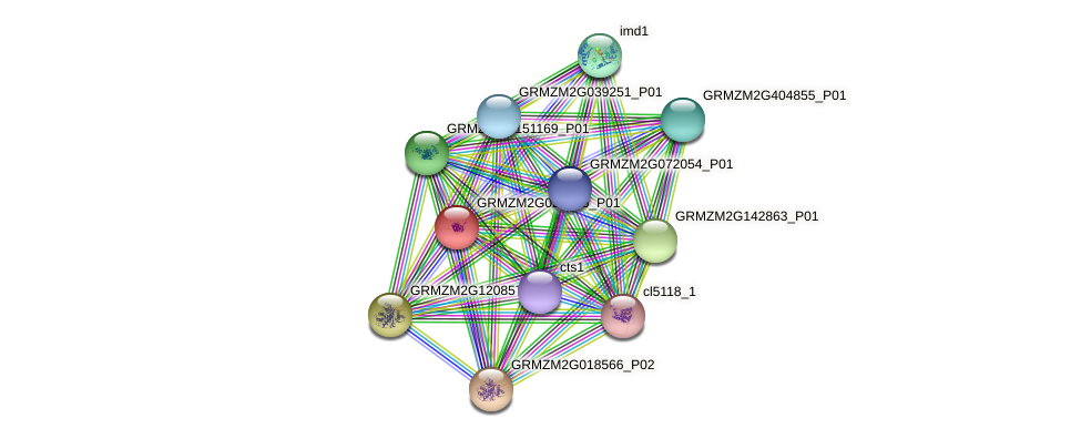 Zm.14993 protein (Zea mays) - STRING interaction network
