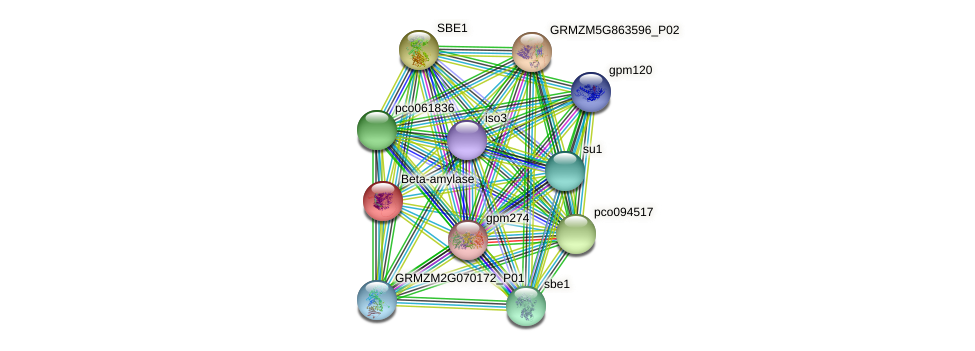 GRMZM2G025833_P01 protein (Zea mays) - STRING interaction network