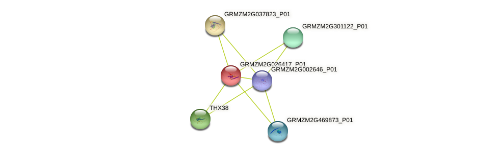 gbp18 protein (Zea mays) - STRING interaction network