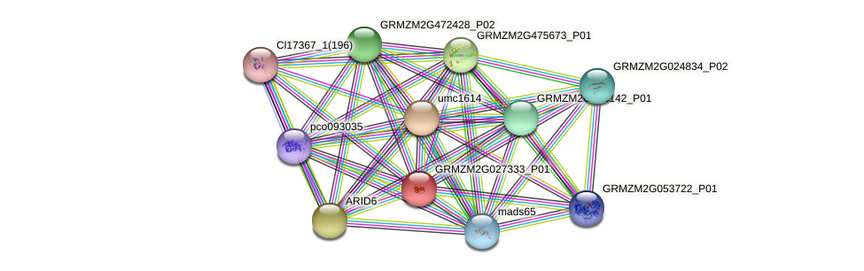 Zm.31196 protein (Zea mays) - STRING interaction network