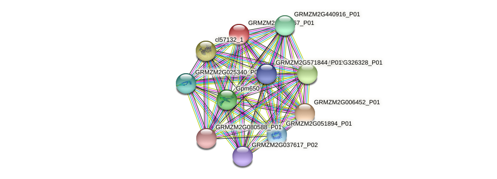 GRMZM2G027867_P01 protein (Zea mays) - STRING interaction network