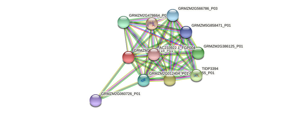 Zm.88679 protein (Zea mays) - STRING interaction network