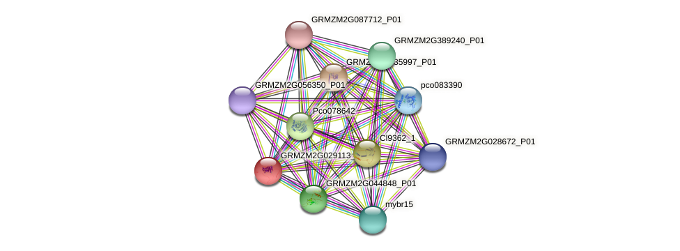 GRMZM2G029113_P01 protein (Zea mays) - STRING interaction network
