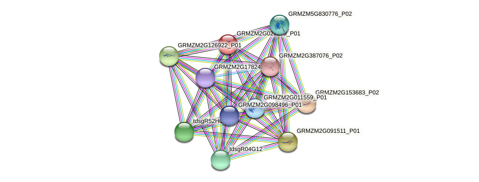 GRMZM2G029270_P01 protein (Zea mays) - STRING interaction network