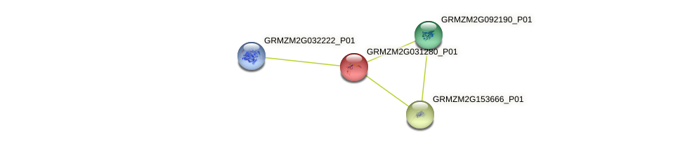 GRMZM2G031280_P01 protein (Zea mays) - STRING interaction network