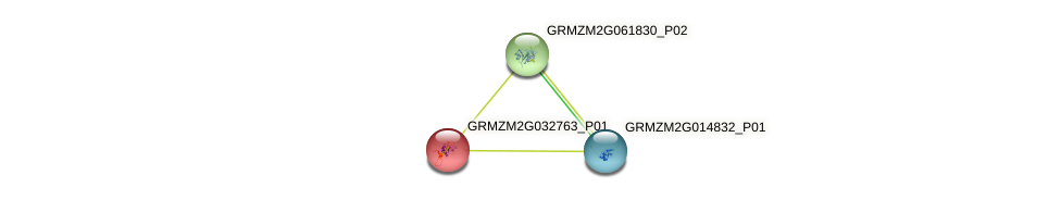 GRMZM2G032763_P01 protein (Zea mays) - STRING interaction network