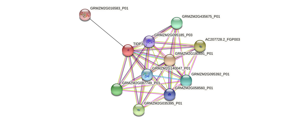 TIDP3766 protein (Zea mays) - STRING interaction network