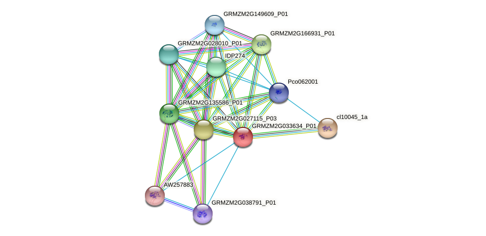 GRMZM2G033634_P01 protein (Zea mays) - STRING interaction network