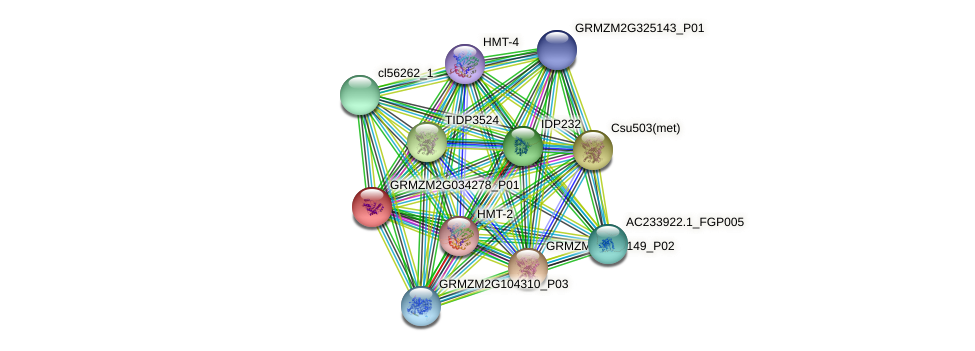 GRMZM2G034278_P01 protein (Zea mays) - STRING interaction network