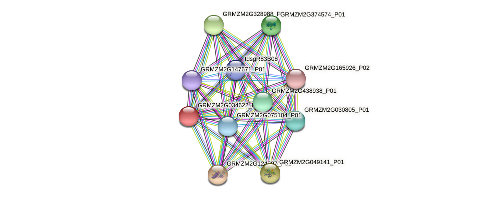 GRMZM2G034622_P02 protein (Zea mays) - STRING interaction network