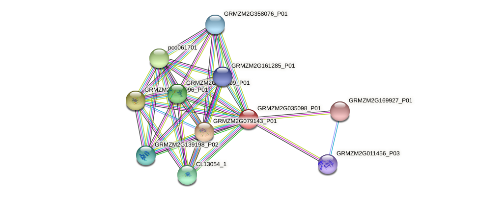 GRMZM2G035098_P01 protein (Zea mays) - STRING interaction network