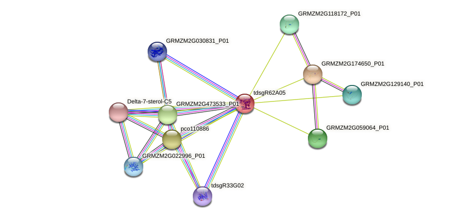 GRMZM2G035309_P01 protein (Zea mays) - STRING interaction network