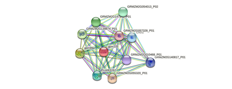 gpm105 protein (Zea mays) - STRING interaction network