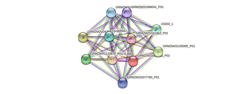 100192475 protein (Zea mays) - STRING interaction network