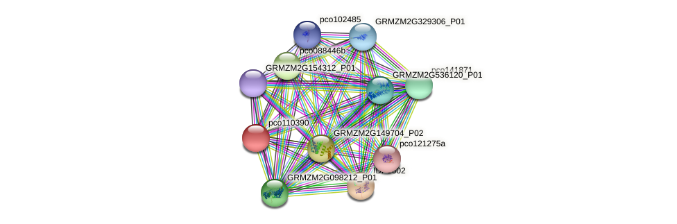 pco110390 protein (Zea mays) - STRING interaction network