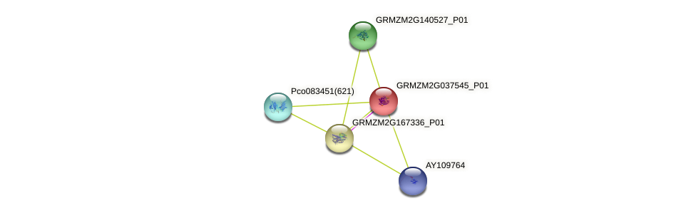GRMZM2G037545_P01 protein (Zea mays) - STRING interaction network