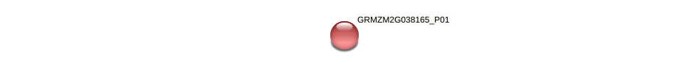 GRMZM2G038165_P01 protein (Zea mays) - STRING interaction network