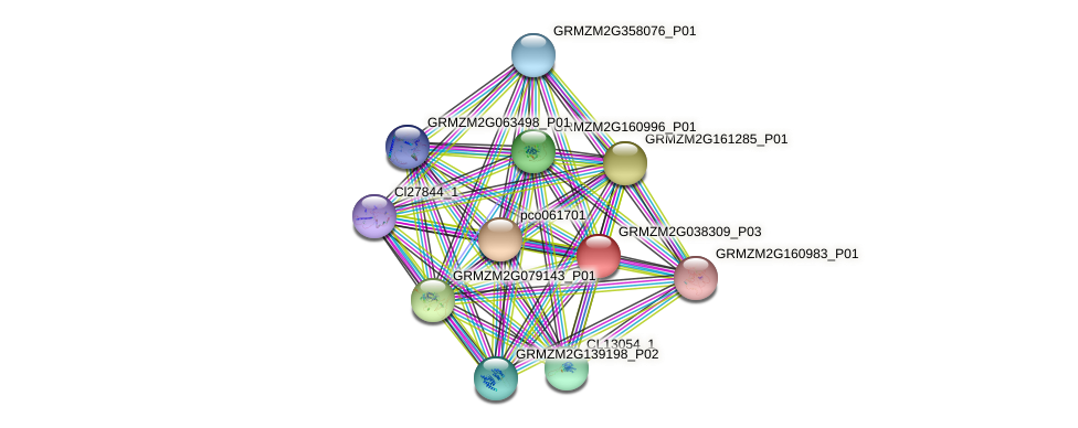 GRMZM2G038309_P01 protein (Zea mays) - STRING interaction network