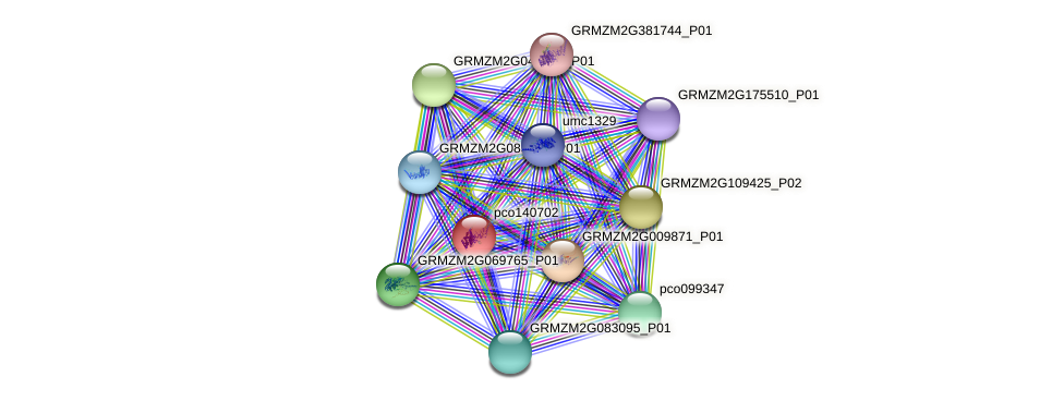 pco140702 protein (Zea mays) - STRING interaction network
