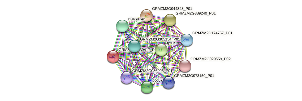 GRMZM2G039417_P01 protein (Zea mays) - STRING interaction network