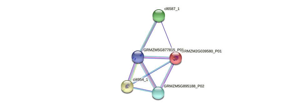GRMZM2G039580_P01 protein (Zea mays) - STRING interaction network