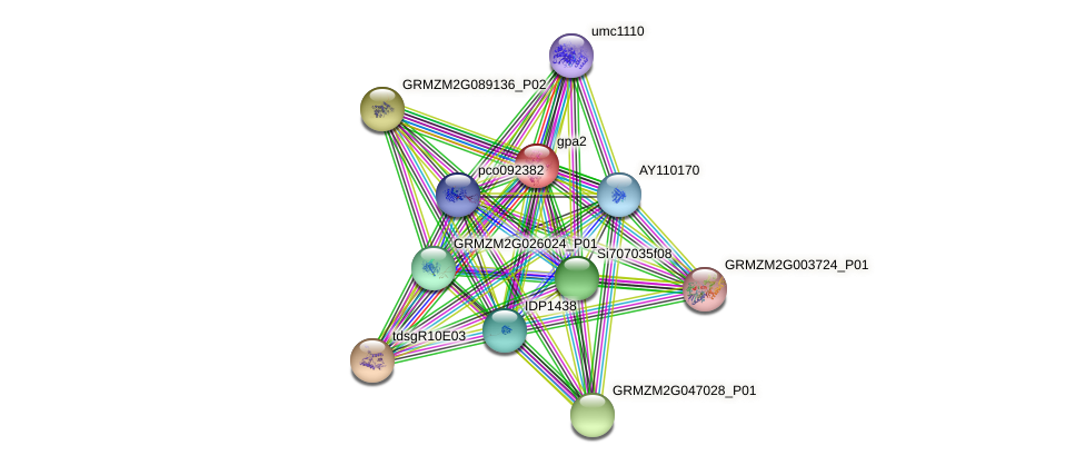 GRMZM2G039723_P01 protein (Zea mays) - STRING interaction network