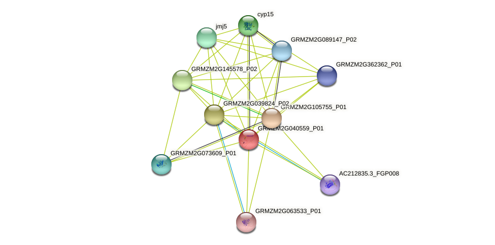 GRMZM2G040559_P01 protein (Zea mays) - STRING interaction network