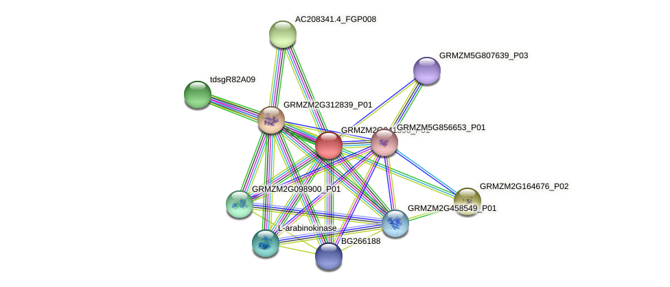 GRMZM2G041356_P01 protein (Zea mays) - STRING interaction network