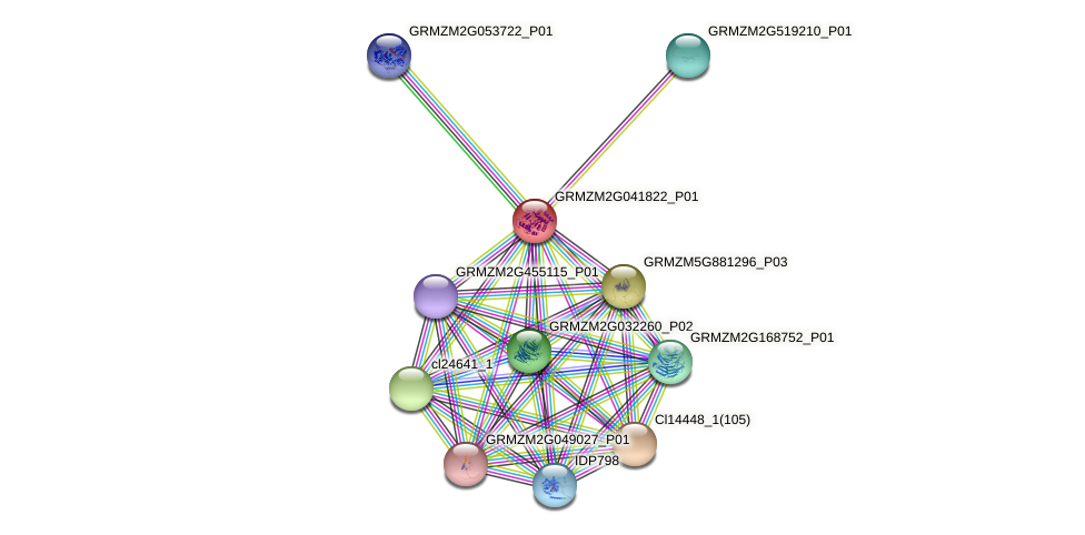 GRMZM2G041822_P01 protein (Zea mays) - STRING interaction network