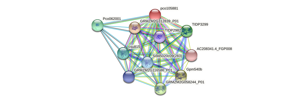 pco105881 protein (Zea mays) - STRING interaction network