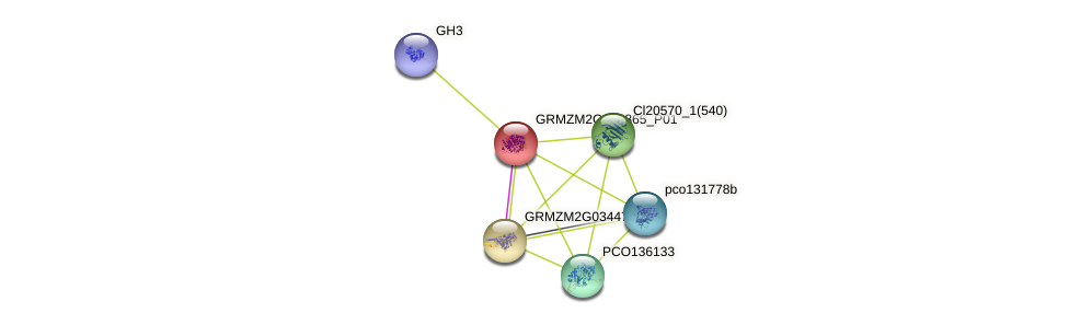 GRMZM2G042865_P01 protein (Zea mays) - STRING interaction network