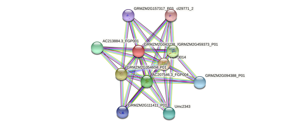 Zm.25633 protein (Zea mays) - STRING interaction network