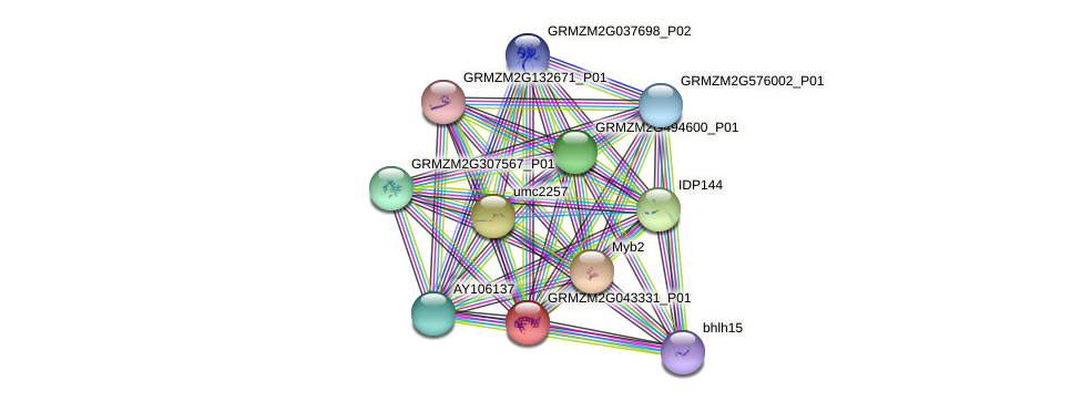 GRMZM2G043331_P01 protein (Zea mays) - STRING interaction network