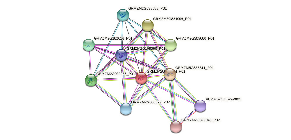 Zm.3965 protein (Zea mays) - STRING interaction network