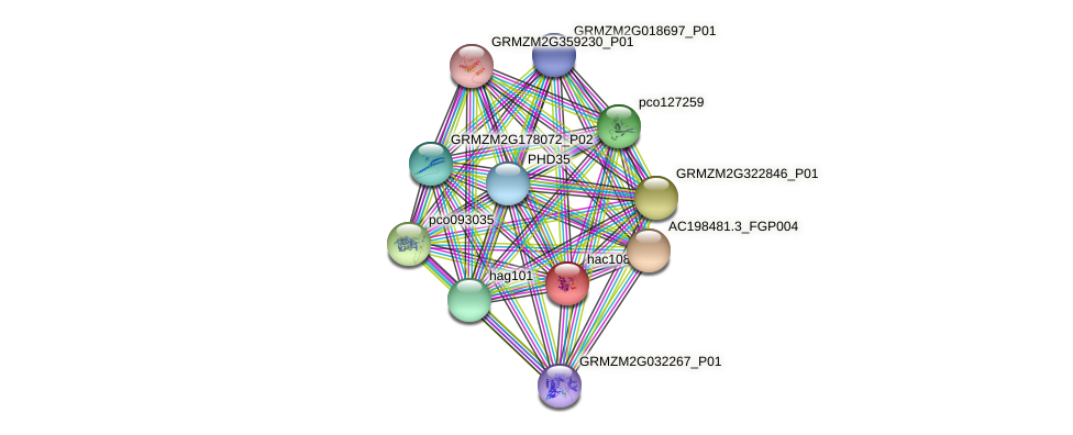 hac108 protein (Zea mays) - STRING interaction network