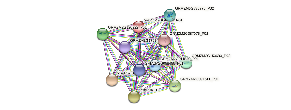 GRMZM2G044527_P01 protein (Zea mays) - STRING interaction network