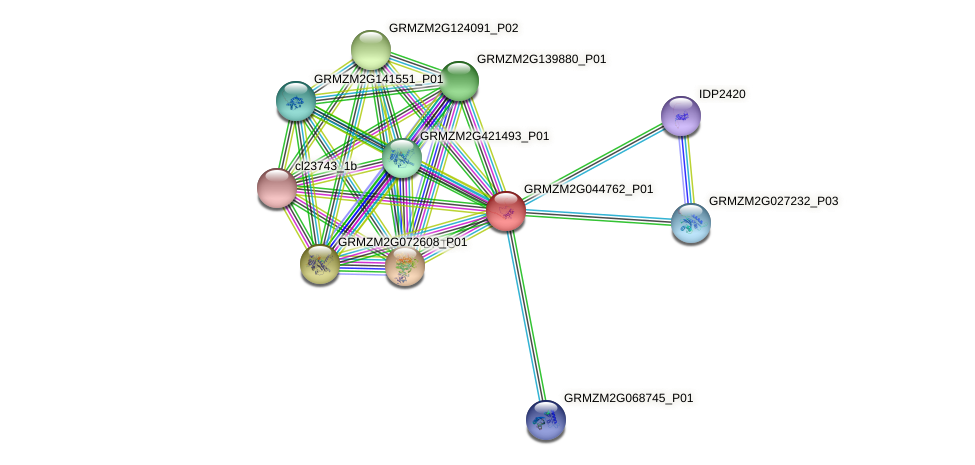 Zm.2168 protein (Zea mays) - STRING interaction network