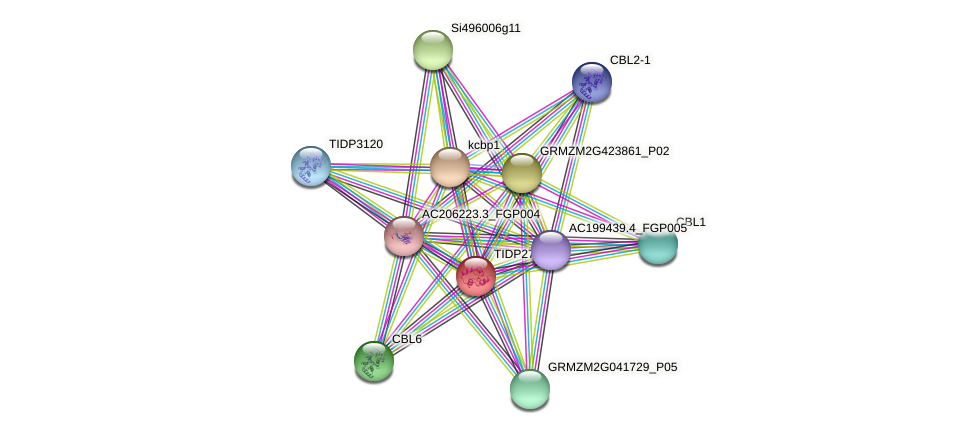 GRMZM2G044963_P01 protein (Zea mays) - STRING interaction network