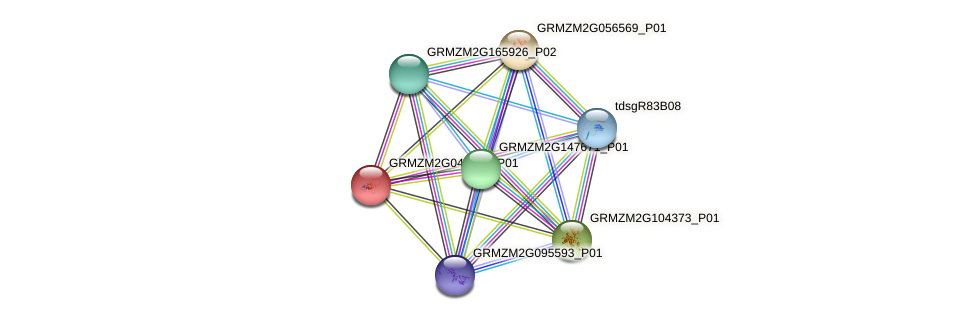 GRMZM2G045084_P01 protein (Zea mays) - STRING interaction network
