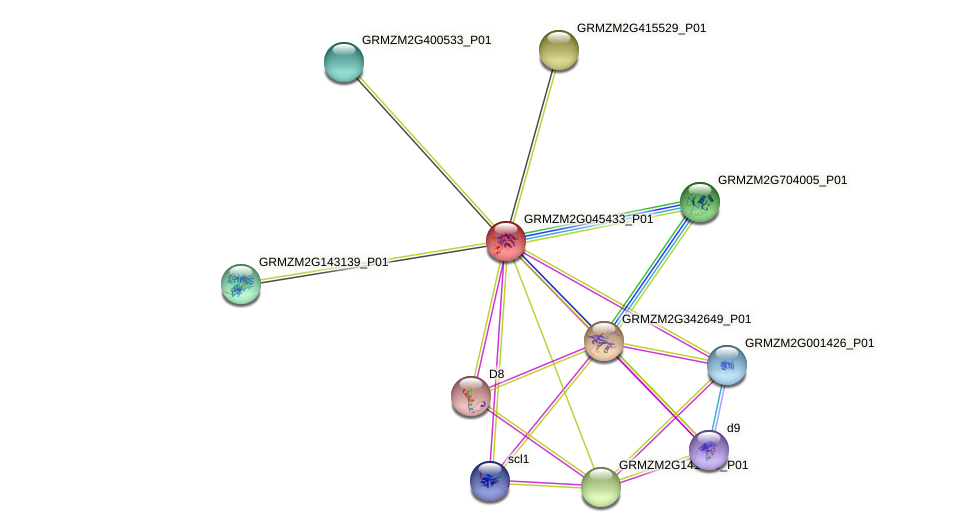 GRMZM2G045433_P01 protein (Zea mays) - STRING interaction network