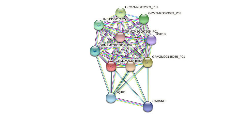GRMZM2G045668_P01 protein (Zea mays) - STRING interaction network