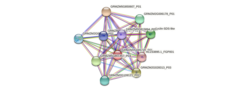 GRMZM2G045720_P01 protein (Zea mays) - STRING interaction network