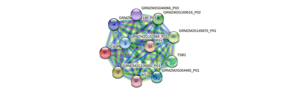 GRMZM2G046163_P01 protein (Zea mays) - STRING interaction network