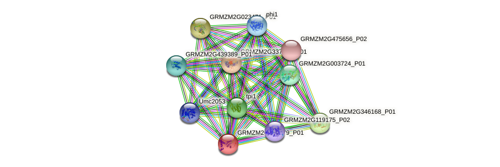 GRMZM2G046679_P01 protein (Zea mays) - STRING interaction network