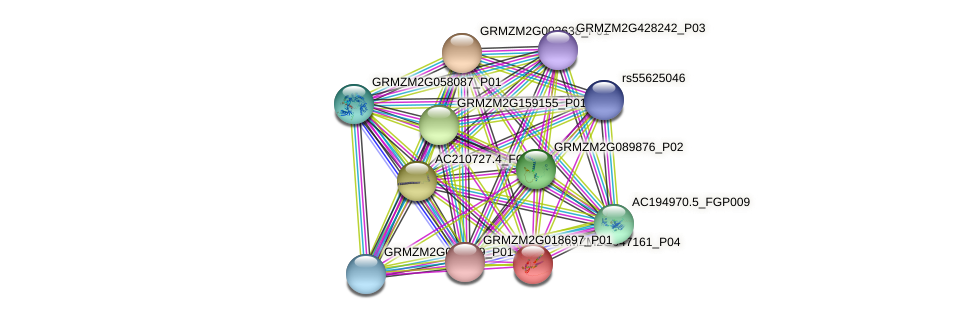 Zm.73425 protein (Zea mays) - STRING interaction network