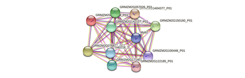 GRMZM2G047164_P01 protein (Zea mays) - STRING interaction network