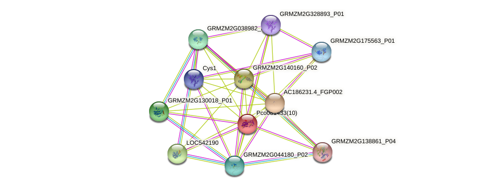 GRMZM2G048549_P01 protein (Zea mays) - STRING interaction network